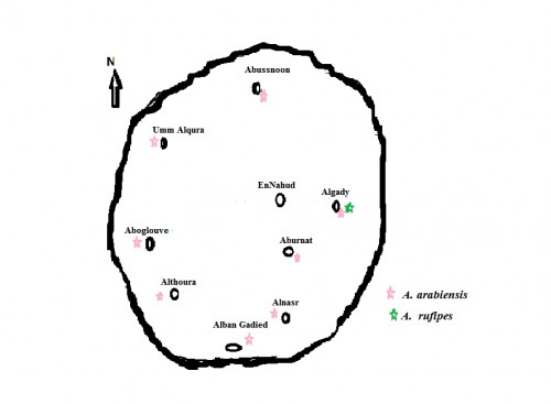 Map of Study Area showing the location of the study block within EnNuhud town, West Kordofan State, Sudan