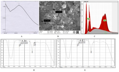 Observations of synthesised nanoparticle (A – UV light absorbance; B – Scanning electron micrograph; C – XRD analysis; D&E – FTIR peaks)