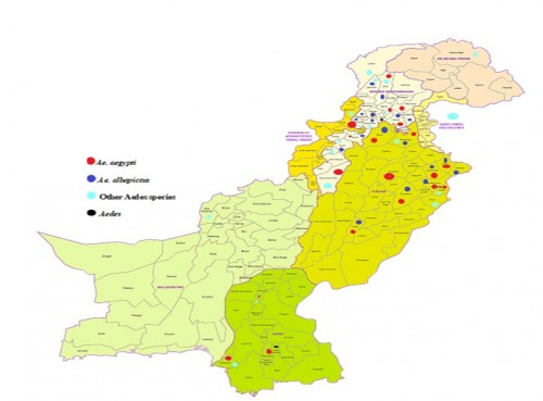 Map showing the distribution of the most prevalent <em>Aedes</em> species currently and diachronically (1934-2019) in Pakistan