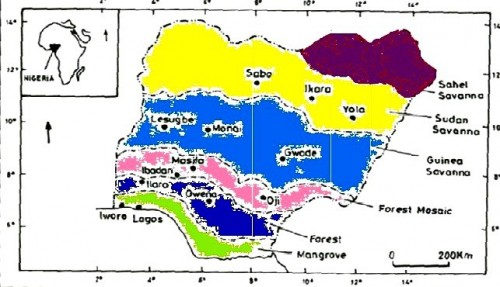 A map of Nigeria showing the six ecological Zones. Dark orchid represents Sahel savanna, Yellow represents Sudan savanna, Royal blue represents Guinea savanna, Pink represents Forest mosaic, Blue represents Forest whilst Green represents Mangrove. Adopted and modified from <sup>[53]</sup>.