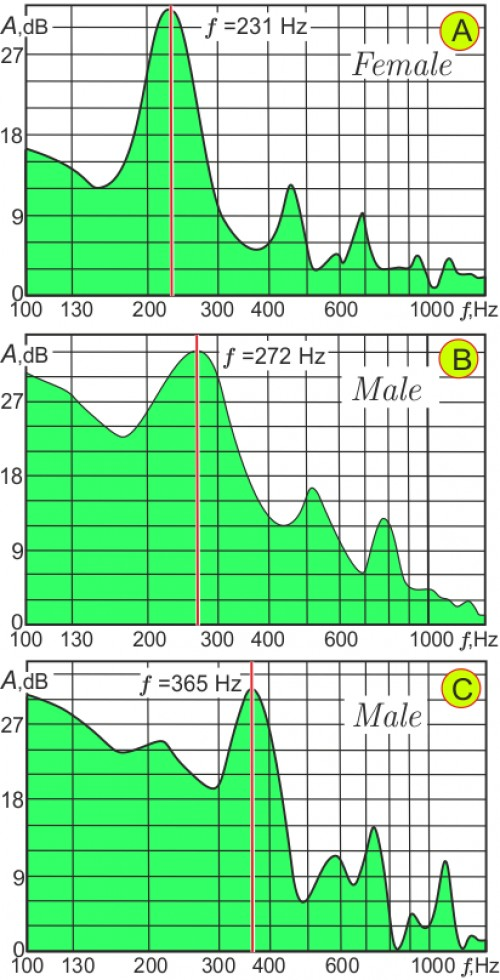 Typical acoustic spectra of <em>An. messeae</em> female and males