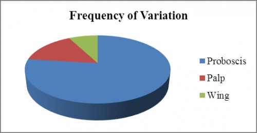 Pie chart showing Frequency of variation