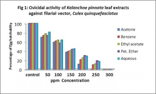 Ovicidal activity of<em> Kalanchoe pinnata</em> leaf extracts against filarial vector, <em>Culex quinquefasciatus</em>