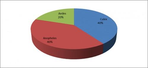 Genus wise percentage of mosquito fauna in Amin Khel KP, Pakistan.