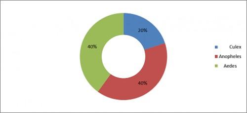 Genus wise percentage of mosquito fauna in Dingerwala District Karak KP, Pakistan