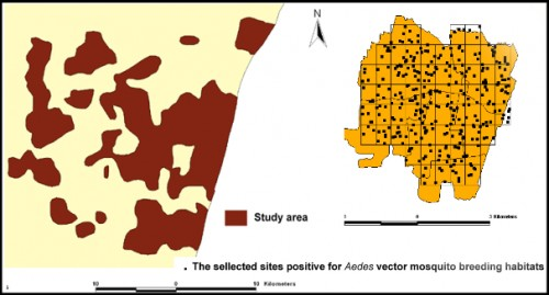 The selected sites / houses positive for dengue chikungunya vector mosquito breeding habitats in Pondicherry urban agglomeration