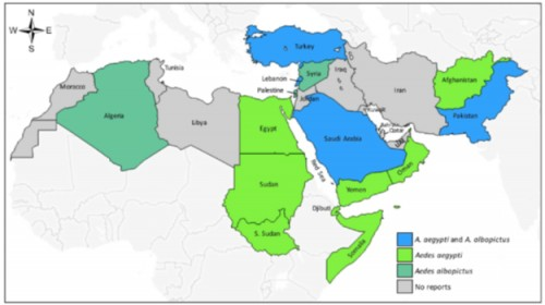 Information about distribution of <em>Ae. aegypti</em> and <em>Ae. albopictus</em> in Middle East and North African countries