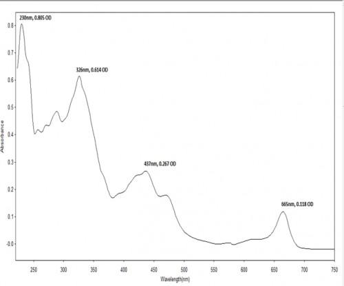 UV-Visible of Lantana leaves extract