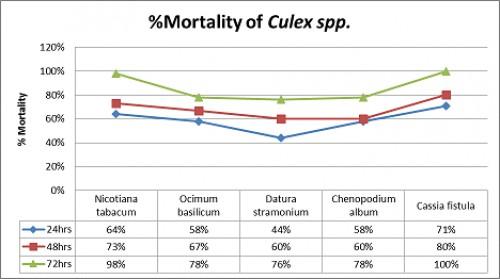 % Mlortality of 3<sup>rd</sup> instar larvae of <em>Culex spp</em> at different time intervals