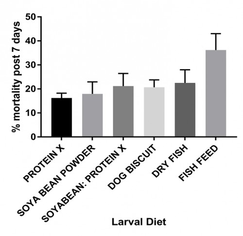 Percentage of adults diet post seven days of emergence in different diets