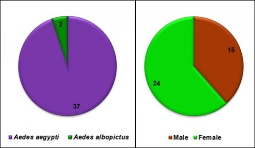 Species and sex composition of sampled adult mosquitoes in the study area