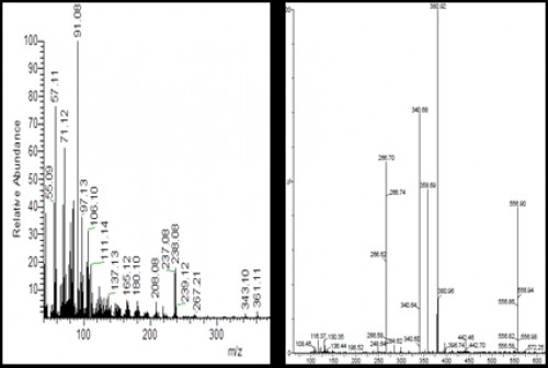 Outline mass spectra of the chromone 1 (left) and chromone 2 (right)