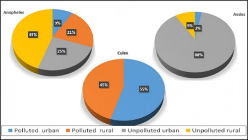 Polluted vs unpolluted breeding sites of mosquitoes