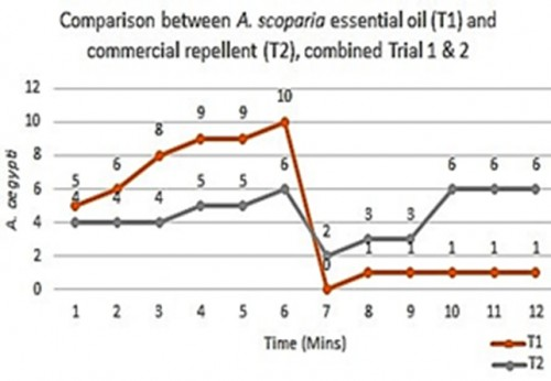 combined results of comparative trials between <em>A scoparia </em>EO and commercial repellent