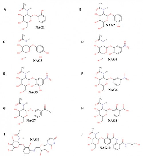 <strong>(A-J)</strong> Schematic representations of 2D images of inhibitors used for docking