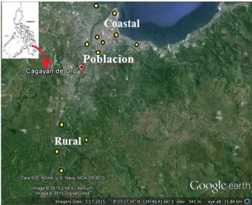 Google-earth Satellite image of Cagayan de Oro City and the locations (in yellow dots) of sampling sites in coastal, poblacion and rural areas of the City.
