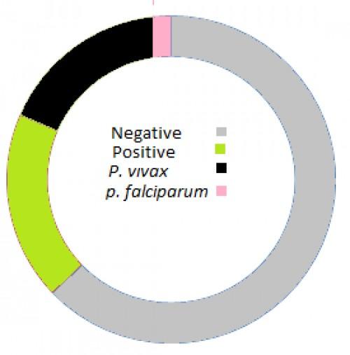 Incidence of plasmodium species in pregnant women