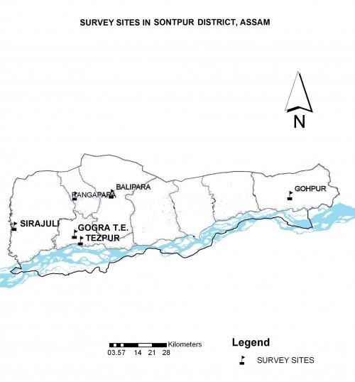 Survey sites in Sonitpur district, Assam