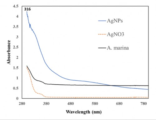 The ultraviolet radiation spectrometer for silver nitrate (AgNO<sub>3)</sub>, <em>A. marina</em> extract and silver nanoparticles (AgNPs).