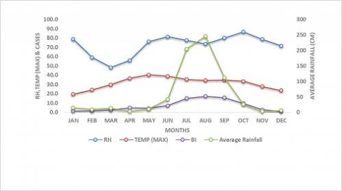 Month wise temperature and Dengue case distribution