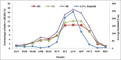 Monthly association of entomological indices with Rainfall