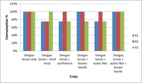 Consumption of dengue larvare by South-east Asian toad (<em>Duttaphrynus melanostictus</em>)<em> </em>in various trials.