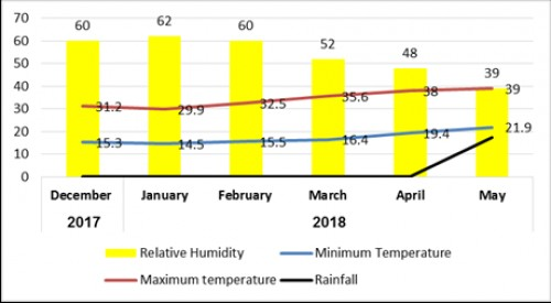 Monthly relationship between temperature, R.H. and Rainfall<strong> </strong>(Source: Asmara International airport and Zonal administration office) (Y axis = %; X axis = month)