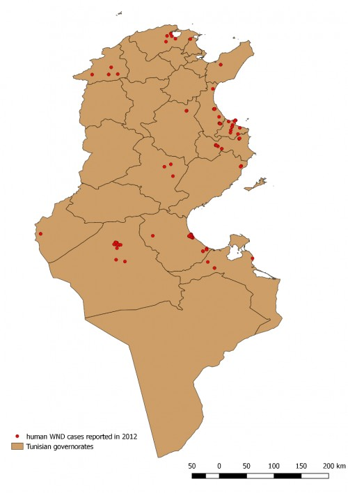 Localisation of WND human cases recorded in 2012 in Tunisia