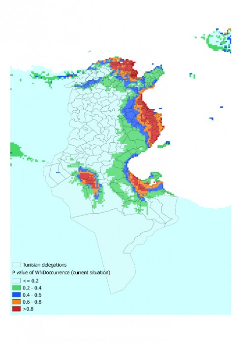 p-value distribution of WND occurrence suitable habitats in Tunisia (current situation)