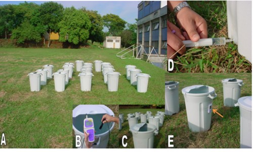 A. Location and layout of the experiment in semi-field conditions. B. Measurements of abiotic parameters and details of the lid simulating a semi-open water tank. D. Sampling of water with a disposable syringe. E. Instrument for measuring ambient temperature (arrow)