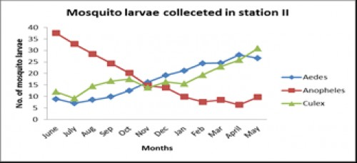 Monthly variation in the diversity of mosquito larvae in station 2