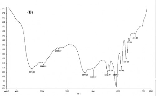 FT-IR spectra of loaded <strong>(B)</strong> capsules with temephos.