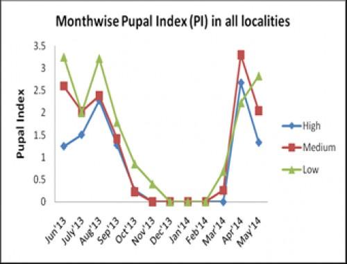 Pupal Index (PI) in HIG, MIG, LIG localities