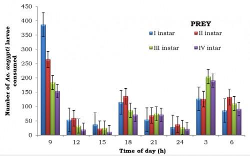 Impact of prey density on the predatory potential of 12<sup>th</sup> instar<em> Bradinopyga geminata </em>recorded at three hours interval (1000 larvae / 5 predators)