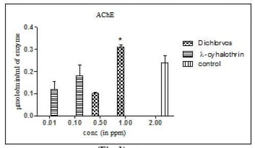 Detoxification enzyme profile of (AChE, Esterase, GST and control) on 4th instar Ae.aegypti larval exposure to dichlorvos and λ-cyhalothrin insecticide.