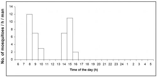 Number of <em>Aedes aegypti</em> caught per man hour