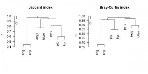 Jaccard and Bray-Curtis index as computed using the same data set. Dissimilarity was calculated by using 1-<em>X</em> where <em>X</em> is whether Jaccard index or Bray-Curtis index. Dissimilarity coefficient was used to compute hierarchical cluster analysis. Legend: anp - <em>An. pretoriensis</em>, ang - <em>An. gambiae s.l.</em>, aegy - <em>Ae. aegypti</em>, bitae - <em>Cx. bitaeniorynchus</em>,pip-<em>Cx.pipienss.l.</em>,tigr-<em>Cx.tigripes</em>,cx-<em>Culex</em>sp