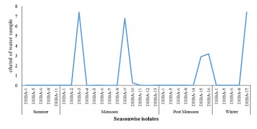 Different bacteria isolated from the breeding water of <em>Aedes</em> sp. in Dehradun